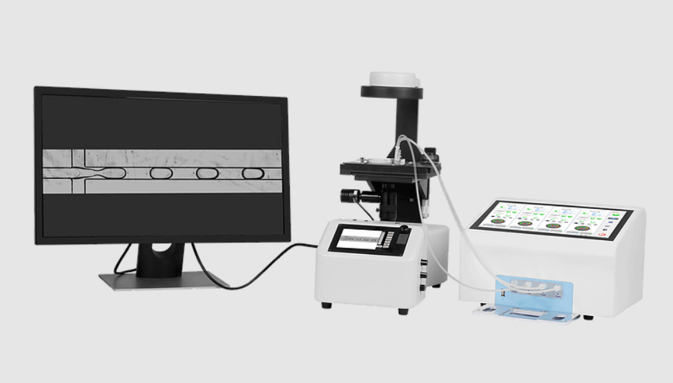 PCR Assay and Microfluidic Instrument