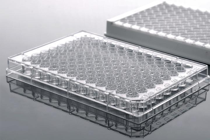 Elisa Plates, Detachable