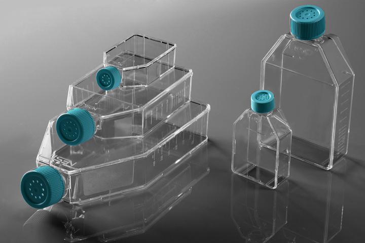 25 Cm Cell Culture Flask, Plug Seal Cap, TC, Sterile