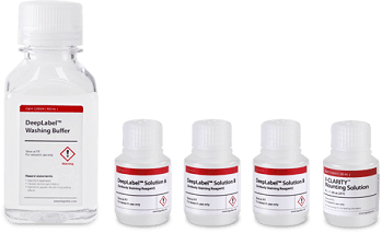 DeepLabel™ Antibody Staining Kit for Cleared Tissues
